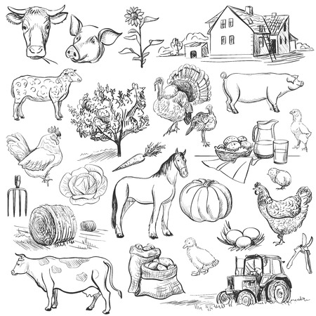 farms: Farm collection - hand drawn set with cow, goat, pig, chicken, rooster, horse, turkey, tractor, rakes, sunflowers, cabbage, carrots, eggs, milk, haystack