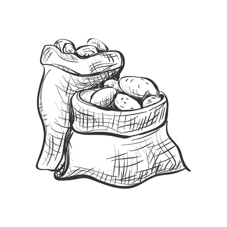 potato: doodle sack of potatoes. Vector Illustration. Isolated in white background.
