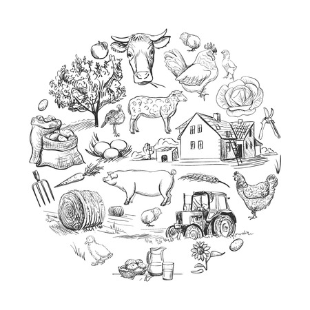 Round card with farm related items with cow, goat, pig, chicken, rooster, horse, turkey, tractor, rakes, sunflowers, cabbage, carrots, eggs, milk, haystack Illustration