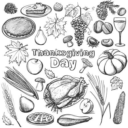 pumpkin pie: Hand drawn vector illustration - Thanksgiving day. Vector illustration with turkey, pumpkin, pie and vegetables