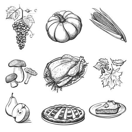 pumpkin pie: Set of hand drawn Thanksgiving attributes. Vector illustration with turkey, pumpkin, pie and vegetables