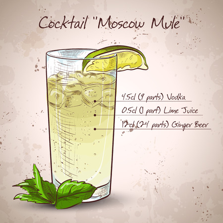 Cocktail with ginger and lime Moscow mule 矢量图像