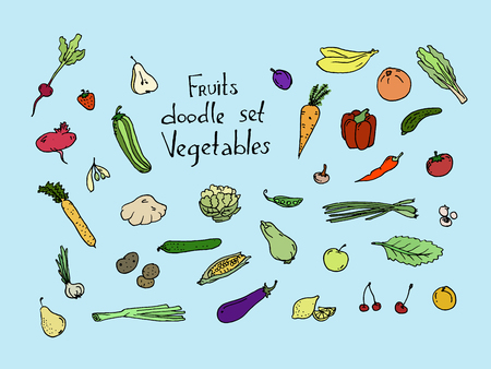 Colored Fruits and vegetables Sketch set. Vector illustration