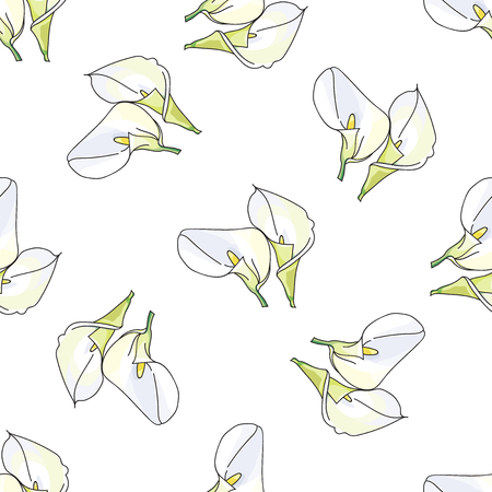 white lilly: Elegant pattern with hand drawn decorative calla flowers, design elements. Floral pattern for wedding invitations, greeting cards, scrapbooking, print, gift wrap, manufacturing.