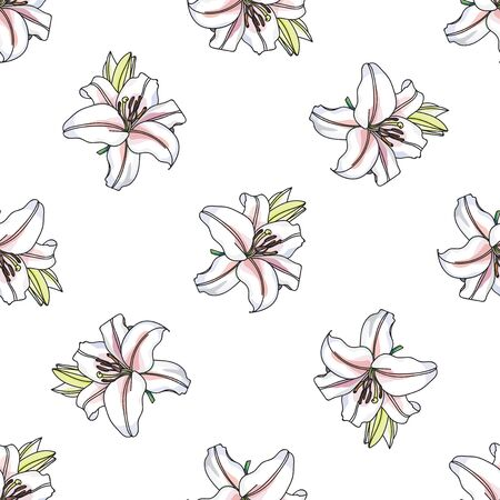 white lilly: Vector Lilly pattern on white background