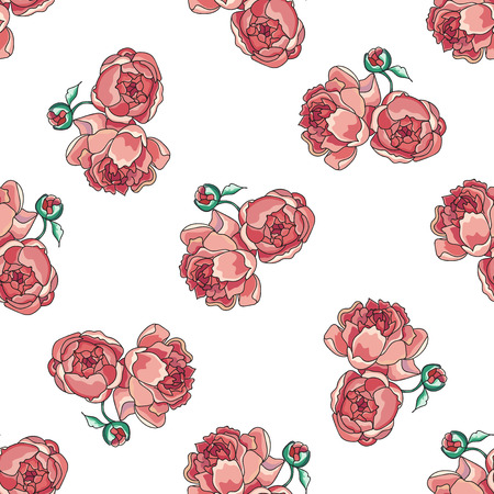 rosy: Rosy peony pattern on white background