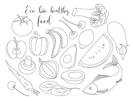 다양 한 손으로 그린 에코 바이오 건강 식품입니다. 격리 된 벡터 일러스트 레이 션.