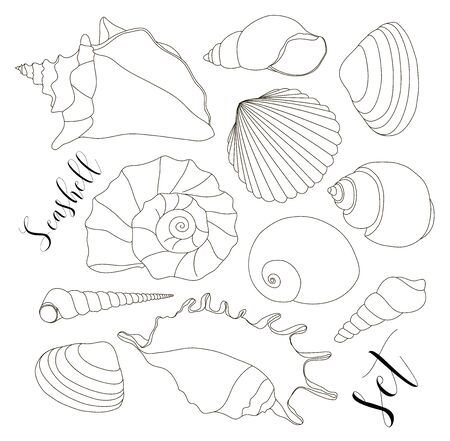 cockle: Set of isolated hand drawn seashell icons. Vector illustration