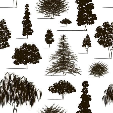 maple tree: Hand drawn Trees sketch set pattern, vintage illustration.