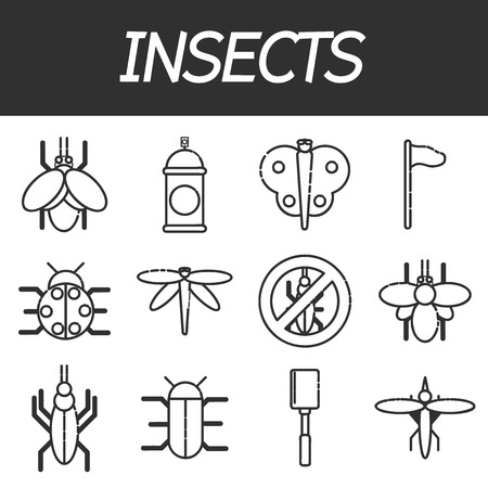 acarus: Set of insects design icons.