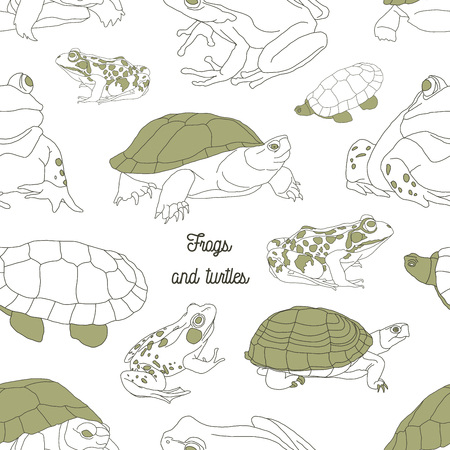 anuran: Set with frogs and turtle