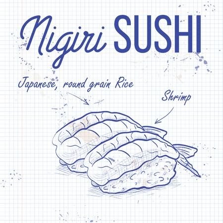Vector nigiri sushi sketch, Ebi sushi on a notebook page Vektorové ilustrace