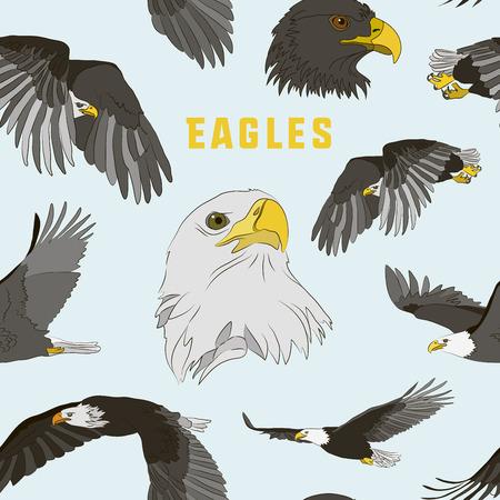 eagle flying: Set of eagles pattern. Flying eagle. Vector illustration, EPS 10 Illustration