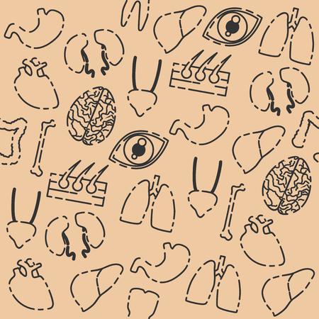 ovaries: Hand drawn Human organs pattern, vector anatomy background Illustration