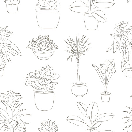 flowerpot: Pattern with green house plants in pots. Leaf and flowers. Flowerpot isolated objects, houseplant collection. Vector illustration