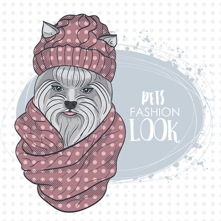 snood: Vector pets fashion look, elegant dog womans face with knitting cap and snood