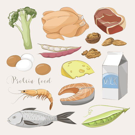 Best protein food icons