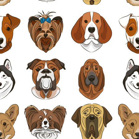 Vector illustration of different dogs breed