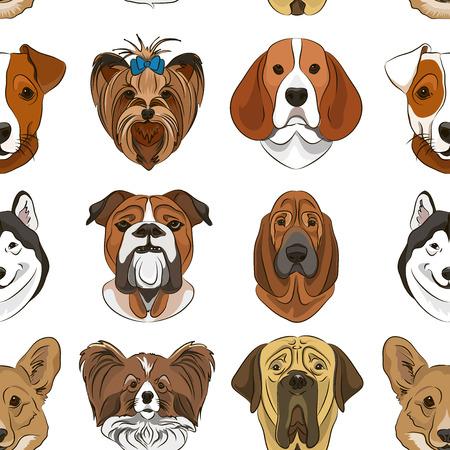 Ilustração em vetor de raça de cães diferentes