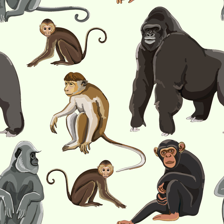 Different types of monkeys pattern. Vector illustration, EPS 10
