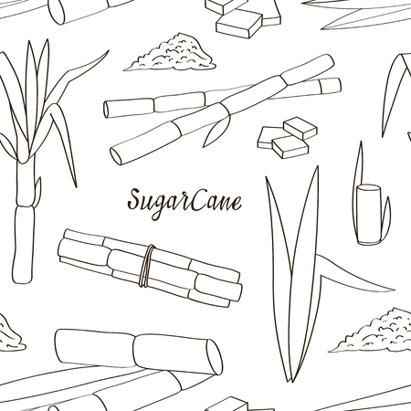 Sugarcane icon patterns. Vector illustration Vectores