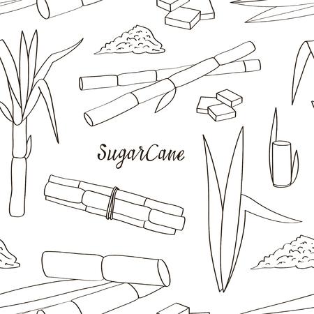Sugarcane icon patterns. Vector illustration Çizim
