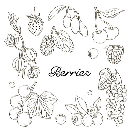 Berries icons set. Excellent Vector illustration Ilustrace