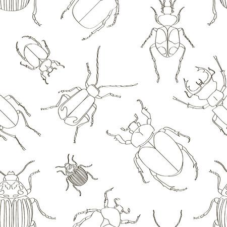 Set of beetle illustrations pattern