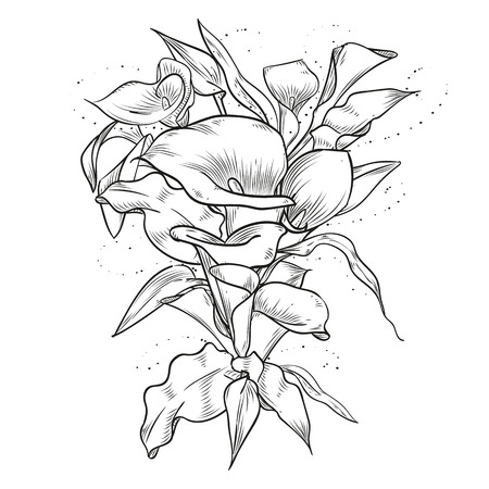 Abstract elegant vintage template with callas flower. 向量圖像