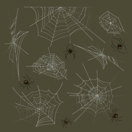 Collection of spiders and webs. Vector illustration, EPS 10 Çizim