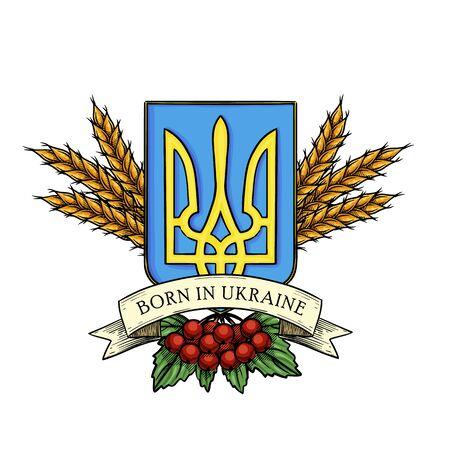 Hand drawn color sketch, Ukrainian national emblem, spikes of wheat, branch of viburnum