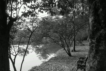 The bench beside the lake make you feel alone.