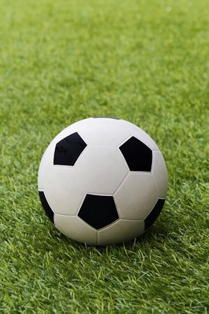grass field: football on grass field