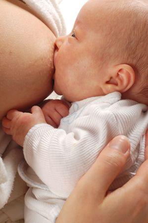 breast feeding Stock Photo - 888088