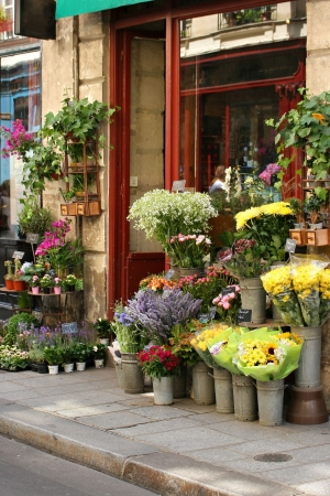 rose window: Small flower shop