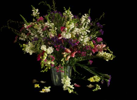 Bouquet of wild flowers on black background Stock Photo - 5375609