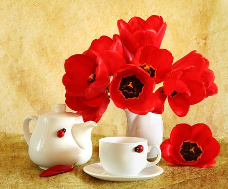 Beautiful still life with red tulips Stock Photo - 6966026