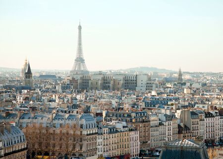 window view: Eiffel Tower and roofs of Paris