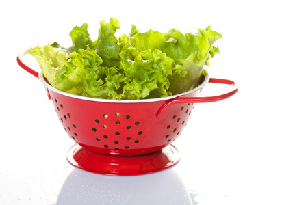 washed: Fresh leaves of green salad over the white background Foto de archivo