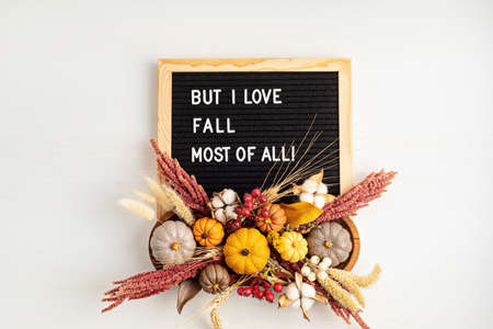 Flat lay with felt letter board and text But i love fall most of all. Autumn table decoration Reklamní fotografie