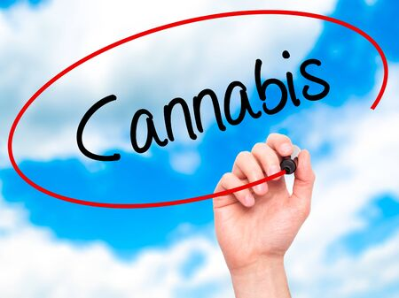 bob: Man Hand writing Cannabis with black marker on visual screen. Isolated on sky. Business, technology, internet concept. Stock Photo