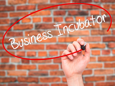 incubation: Man Hand writing Business Incubator with black marker on visual screen. Isolated on bricks. Business, technology, internet concept. Stock Photo Stock Photo