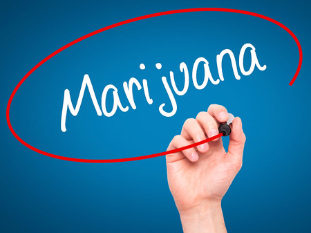 american downloads: Man Hand writing Marijuana with black marker on visual screen. Isolated on blue. Business, technology, internet concept. Stock Photo Stock Photo