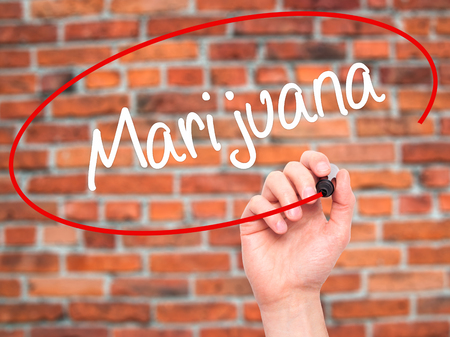 american downloads: Man Hand writing Marijuana with black marker on visual screen. Isolated on bricks. Business, technology, internet concept. Stock Photo