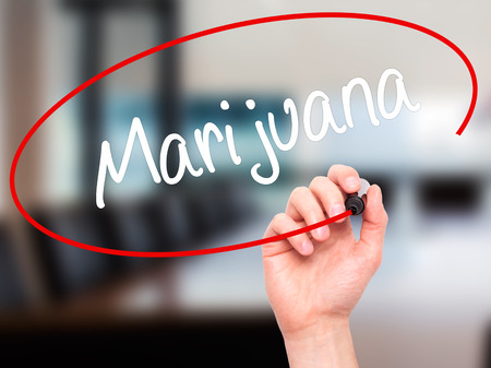american downloads: Man Hand writing Marijuana with black marker on visual screen. Isolated on office. Business, technology, internet concept. Stock Photo
