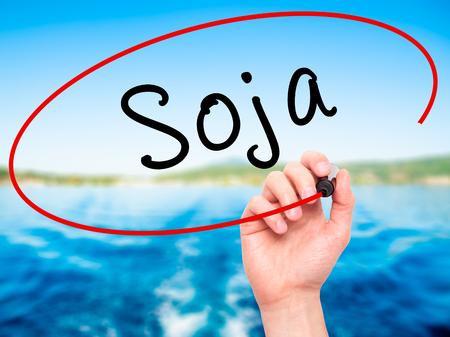 soja: Man Hand writing Soja (Soybean in Portuguese) with black marker on visual screen. Isolated on nature. Business, technology, internet concept. Stock Photo