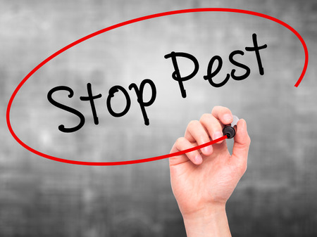 disease control: Man Hand writing Stop Pest with black marker on visual screen. Isolated on background. Business, technology, internet concept. Stock Photo