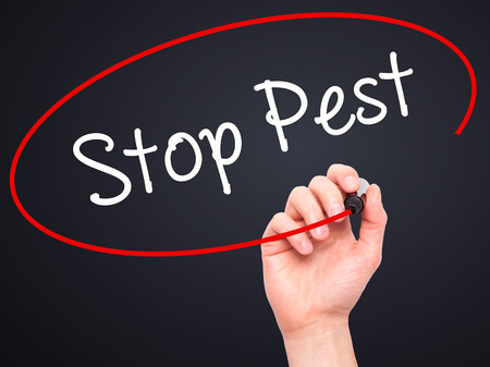 not painted: Man Hand writing Stop Pest with black marker on visual screen. Isolated on background. Business, technology, internet concept. Stock Photo