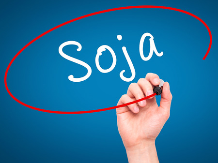 soja: Man Hand writing Soja (Soybean in Portuguese) with black marker on visual screen. Isolated on blue. Business, technology, internet concept. Stock Photo Stock Photo