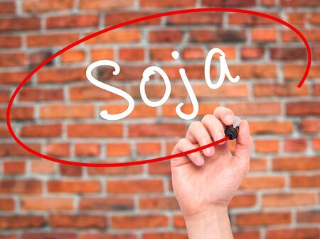 soja: Man Hand writing Soja (Soybean in Portuguese) with black marker on visual screen. Isolated on bricks. Business, technology, internet concept. Stock Photo